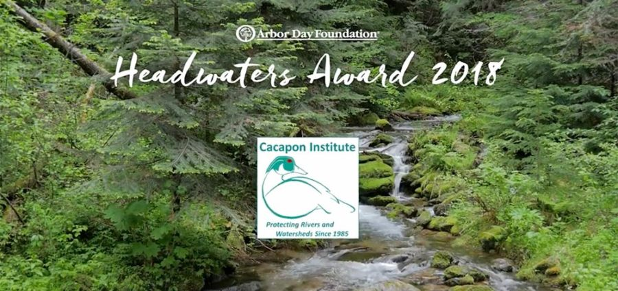 Chesapeake Tree Canopy Network highlighted Cacapon Institute