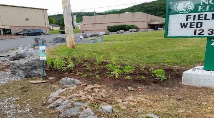 A Rain Garden For North Fork